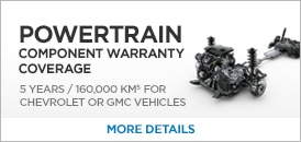 Click image to go to the GM Fleet 2017 warranty page.
